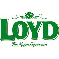 Надійшов у продаж чай Loyd.